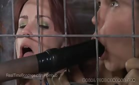 <p>Two Caged Busty BDSM Sluts Fuck Each Other With Dildos</p>