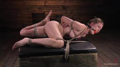 <p>Hogtied bondage sub Ashley Lane getting her shaved twat teased roughly</p>
